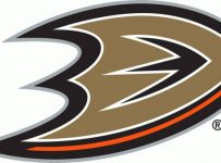 Anaheim Ducks Color Palette