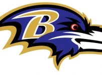 Baltimore Ravens Color Palette