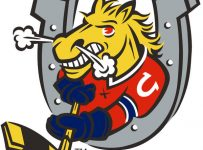 Barrie Colts Color Palette
