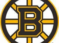 Boston Bruins Color Palette