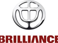 Brilliance Logo Color Palette