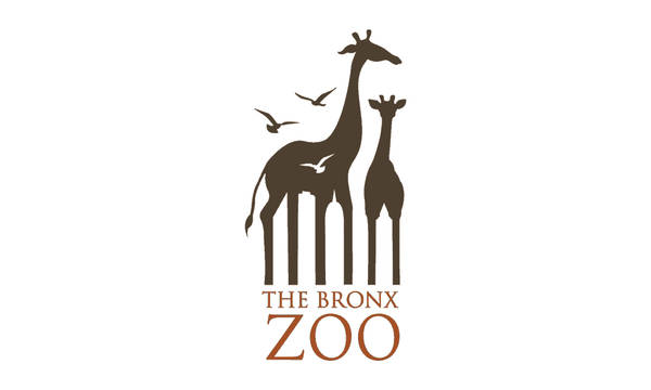 Bronx Zoo Logo Color Palette