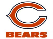 Chicago Bears Color Palette