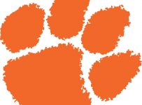 Clemson Tigers Color Palette
