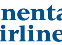Continental Airlines Logo Color Palette