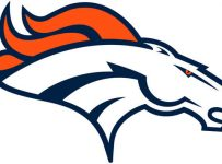 Denver Bronco Team Color Palette