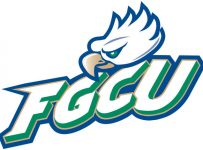 Florida Gulf Coast Eagles   Fgcu Color Palette