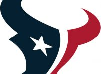 Houston Texans Color Palette