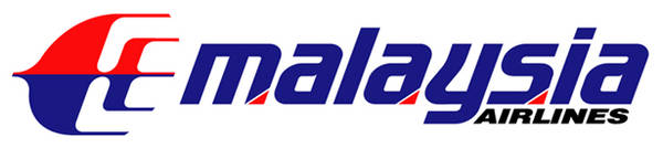 Malaysia Airlines Logo Color Palette