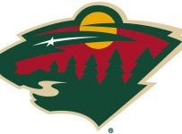 Minnesota Wild Color Palette