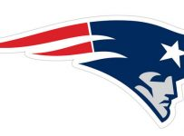 Patriots Color Palette