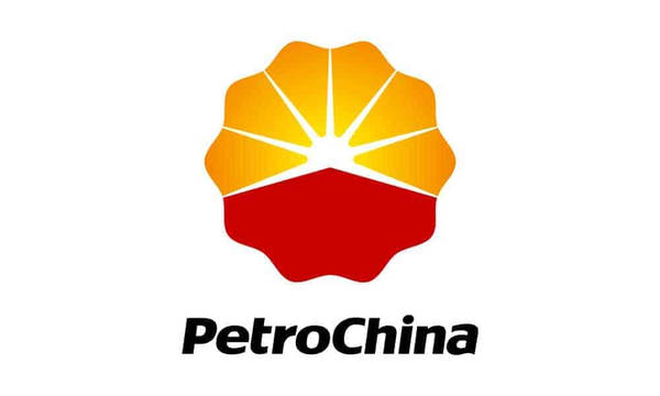 Petr China Logo Color Palette