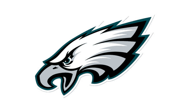 Philadelphia Eagles Logo Color Palette