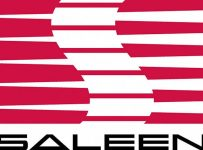 Saleen Logo Color Palette