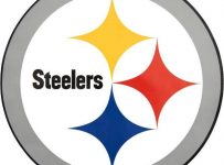 Steelers Color Palette