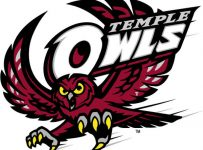 Temple Owls Color Palette