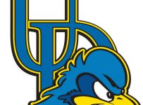 University Of Delaware Blue Hens Color Palette