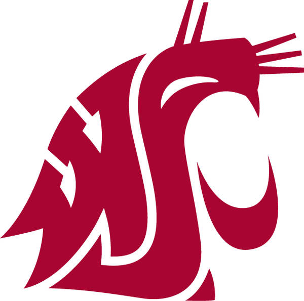 Washington State Cougars Wsu Color Palette