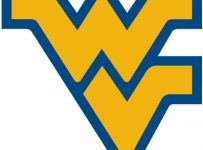 West Virginia Mountaineers Color Palette