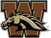 Western Michigan Broncos Color Palette