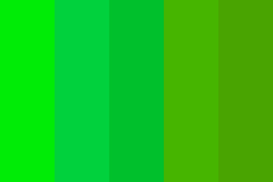 A Quiet Forest Color Palette