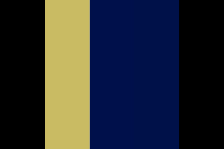 A Starry Night Color Palette