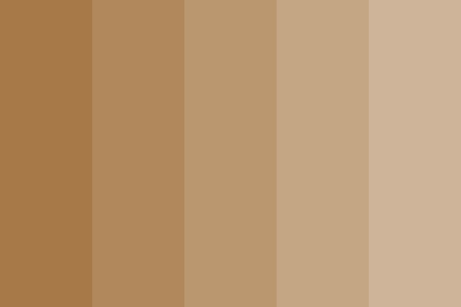 Aiden Skin Tone Color Palette