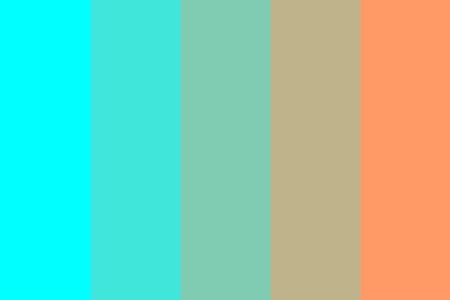 Aqua To Tangerine Color Palette