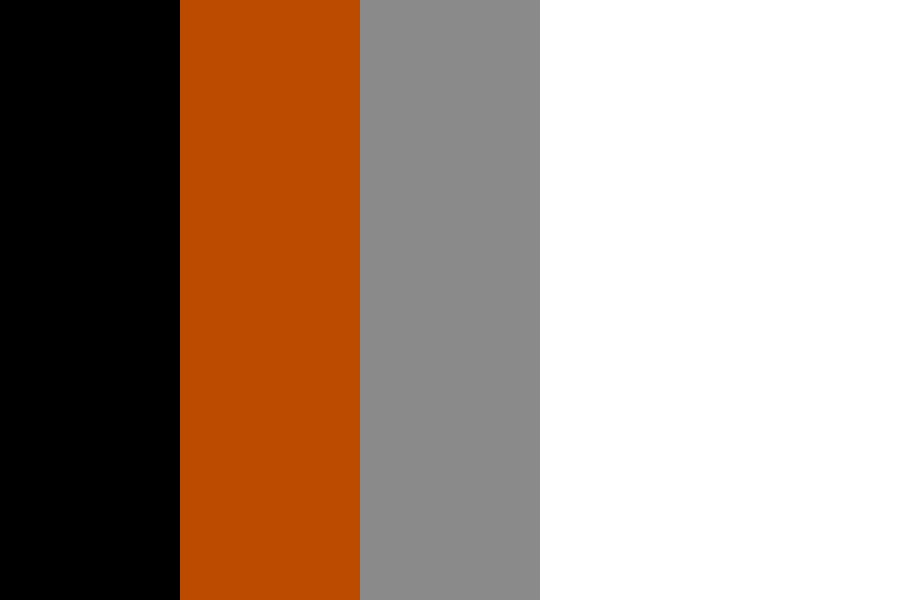 Black Hills Bandits Color Palette