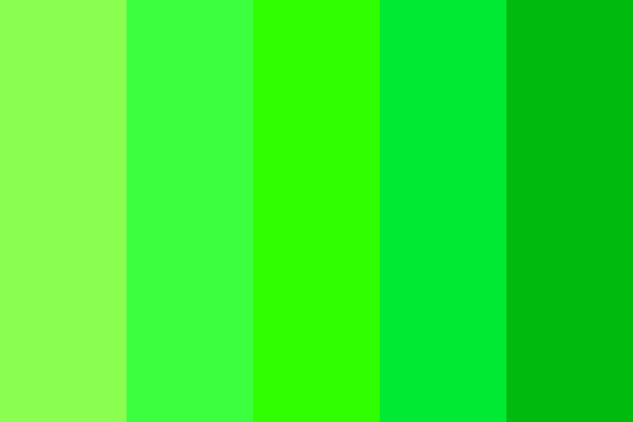 Bright Forest Color Palette
