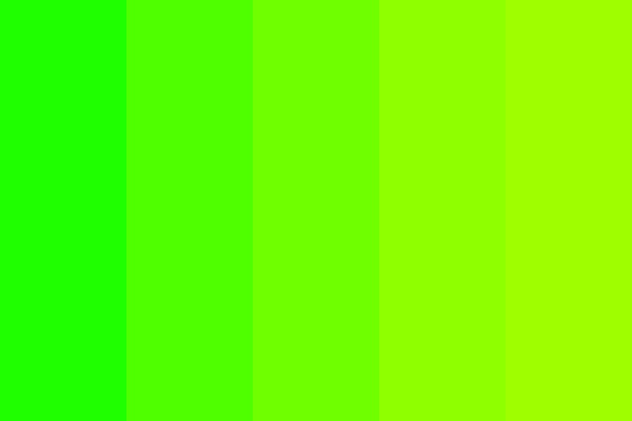 Brighter Than My Future Color Palette