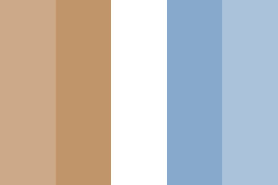 Brown And Blue Color Palette