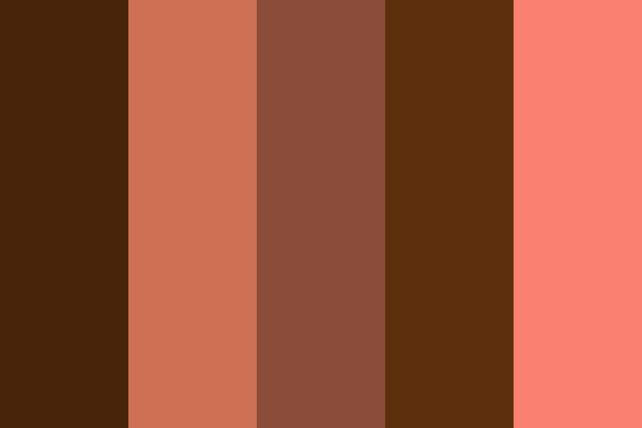 Browns Clashes With Pinks Color Palette