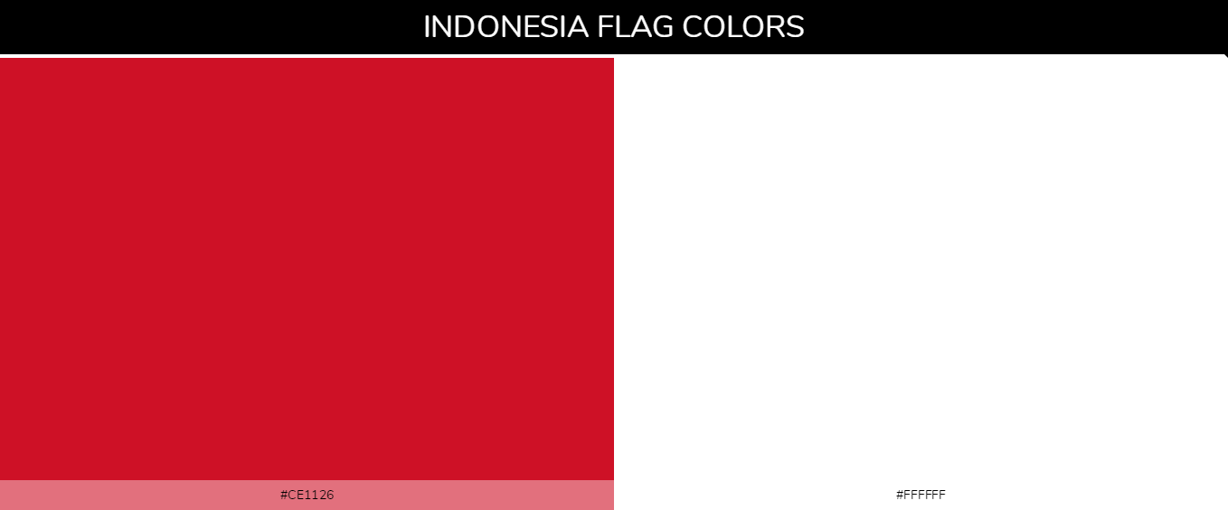Color Palettes Of All Country Flags 067