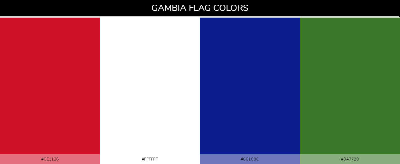 Color Palettes Of All Country Flags 077