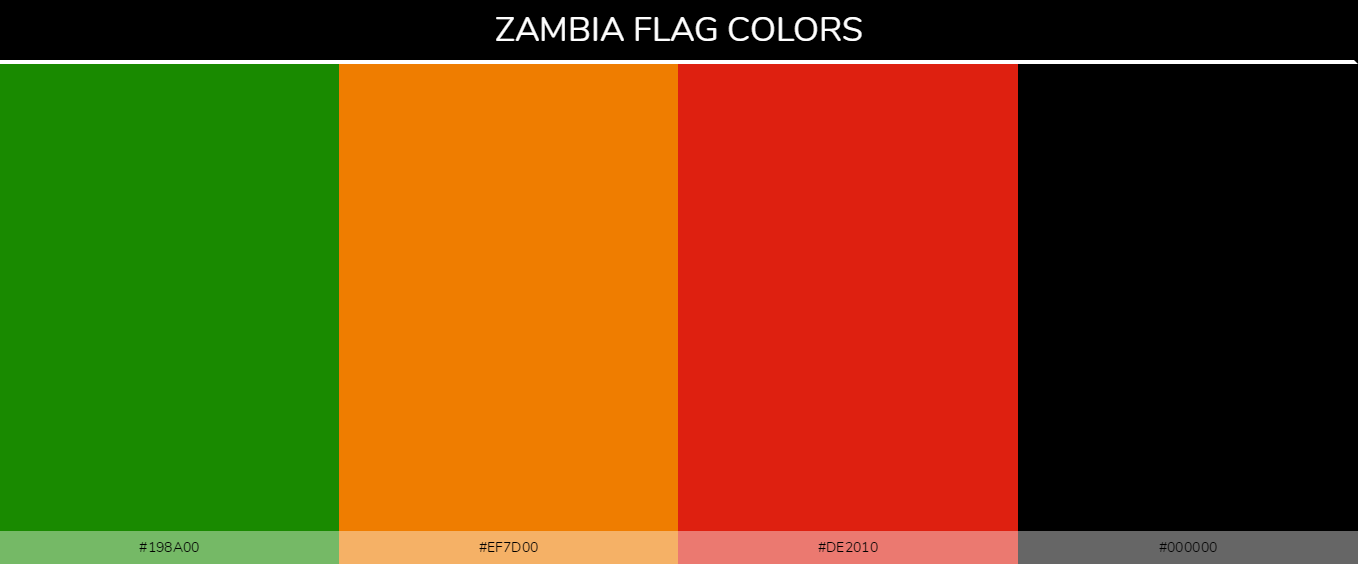 Color Palettes Of All Country Flags 137