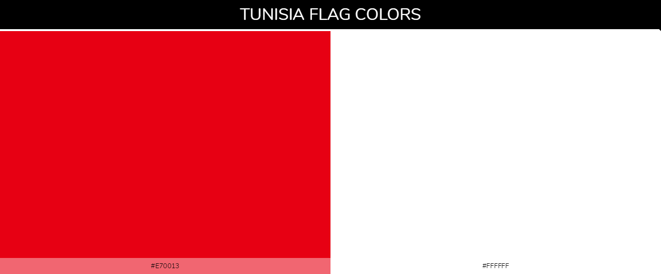 Color Palettes Of All Country Flags 143