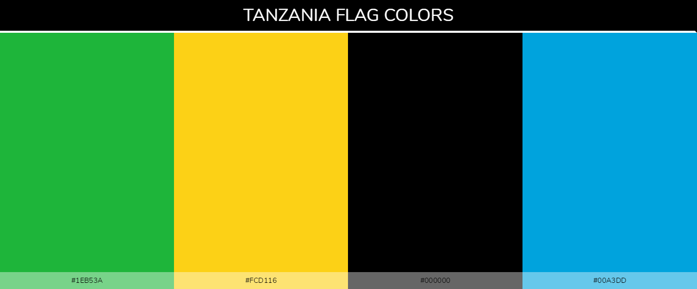 Color Palettes Of All Country Flags 146