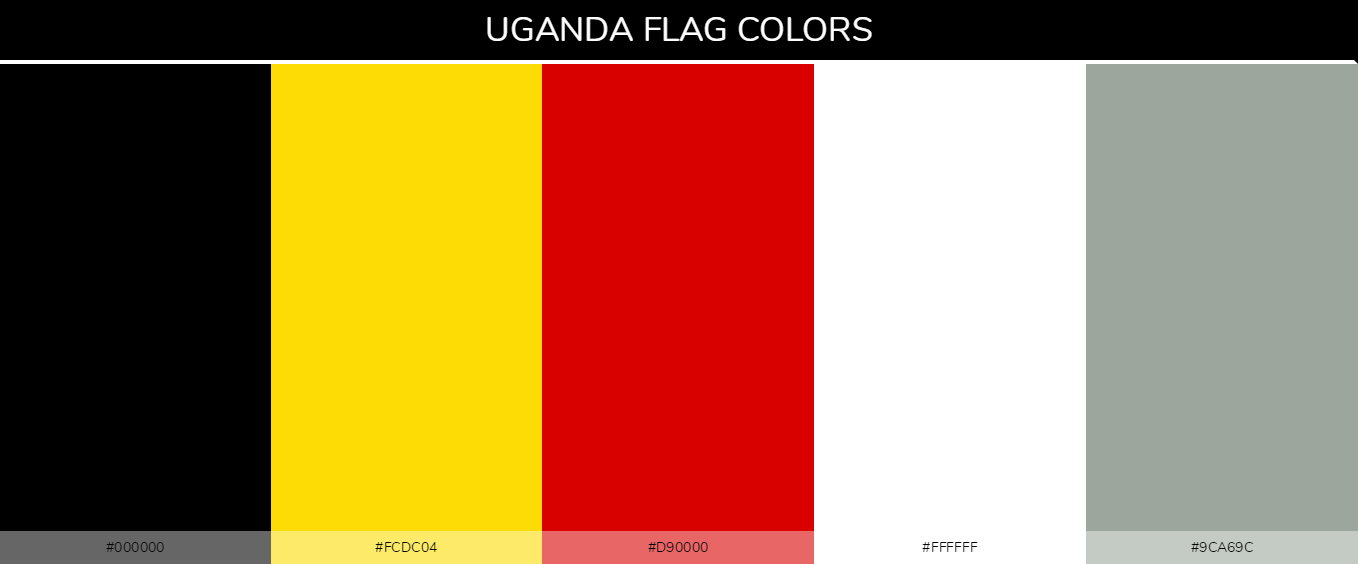 Color Palettes Of All Country Flags 155