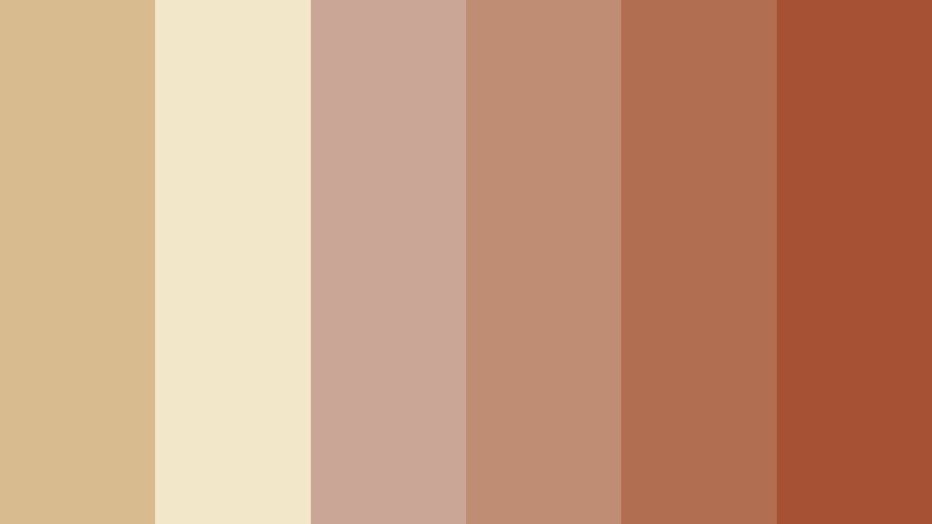 Country Music Store Color Palette