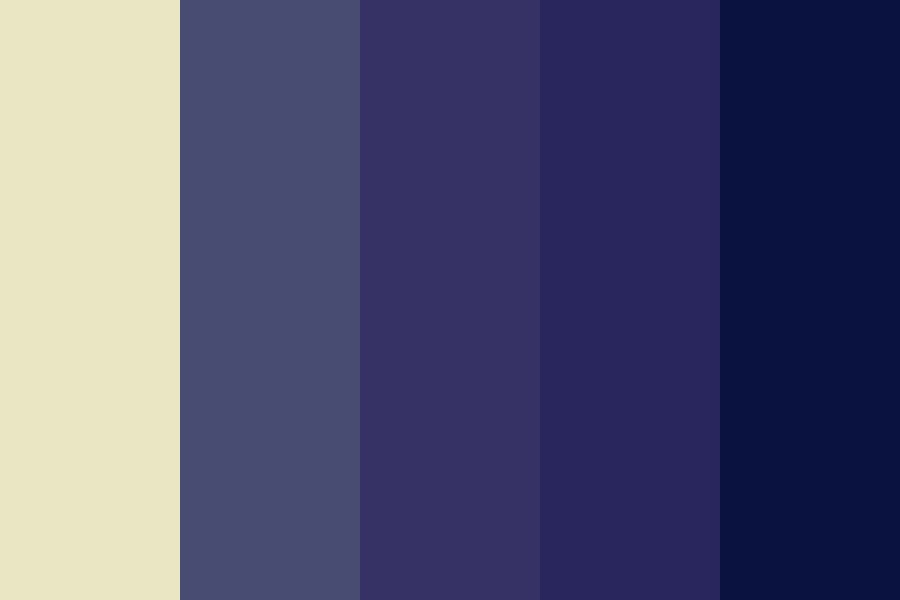 Court Of Night Color Palette