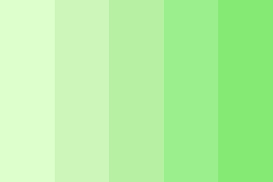 Dream Green Sunset Color Palette
