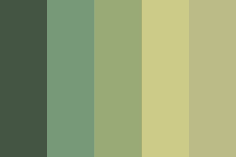 Dull Forest Color Palette