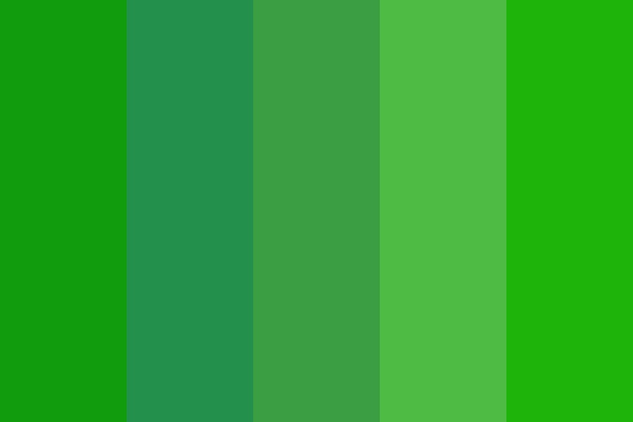 Evergreen Forest After Rain Color Palette