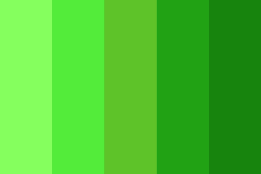Forest Complementary Color Palette
