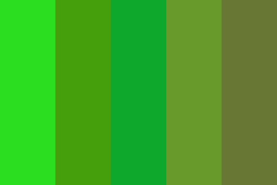 Green Forest Color Palette