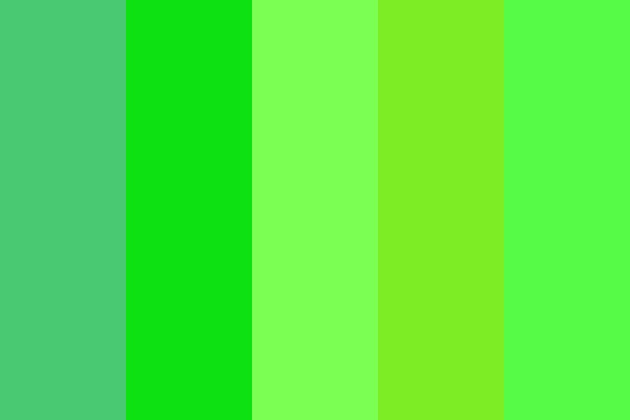 Green Portfolio Color Palette