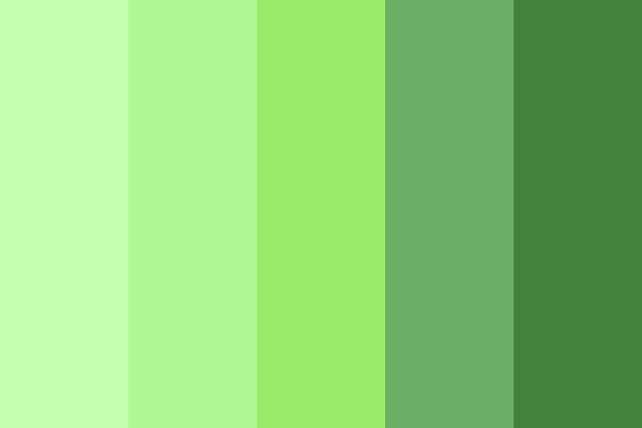 Green Sweater Color Palette