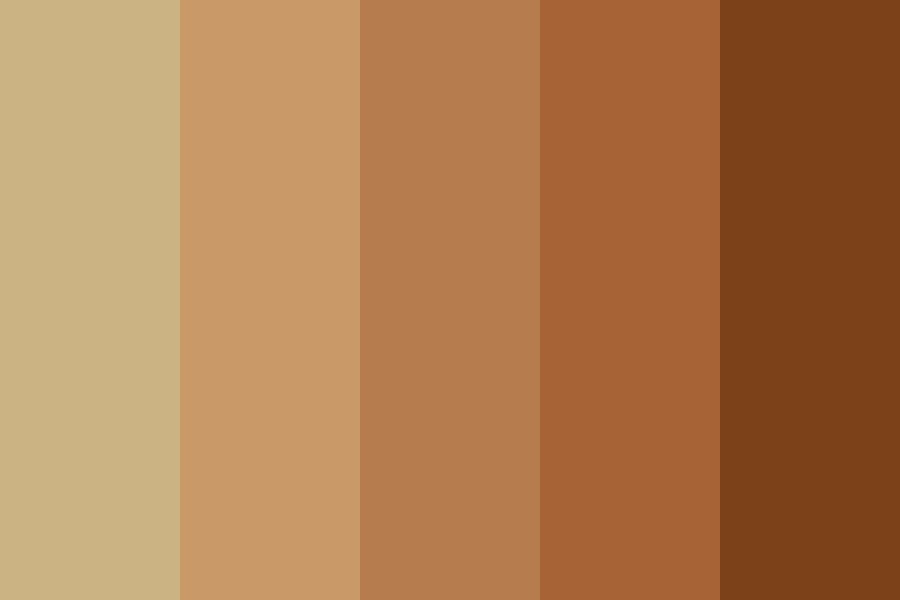 Hey Look Its Browns Color Palette