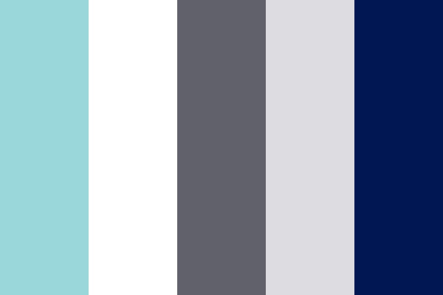 Icy Winter Color Palette